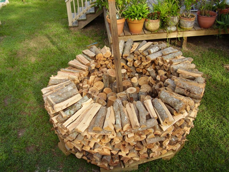 What Type Of Firewood Is Best The Prepper Journal
