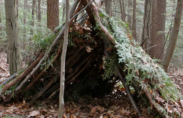 Building A Shelter In The Woods : How to make a shelter in the woods prepper journal