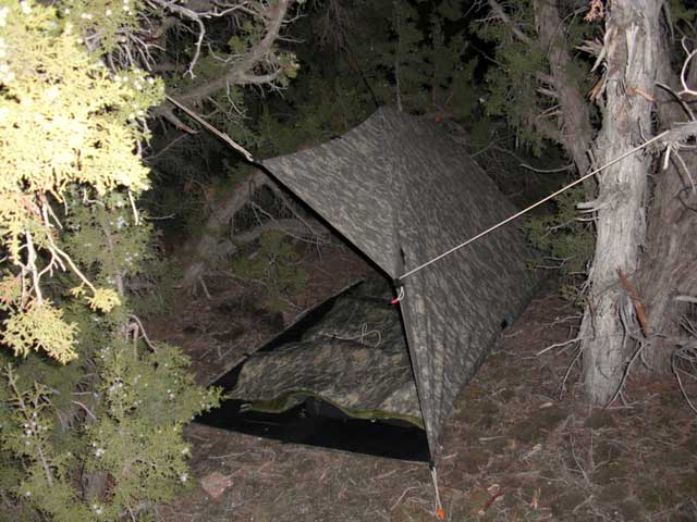 Tarps are great shelter options that are lightweight and easy to put up/take down.