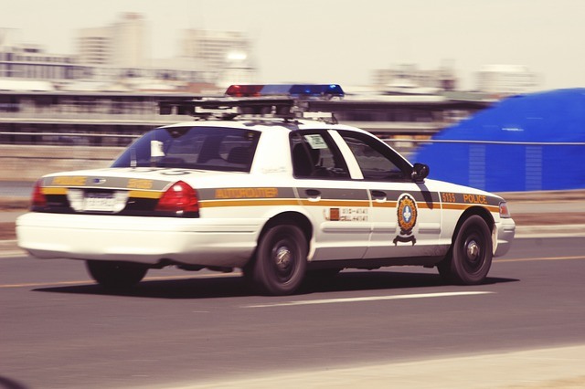 police-car-406893_640