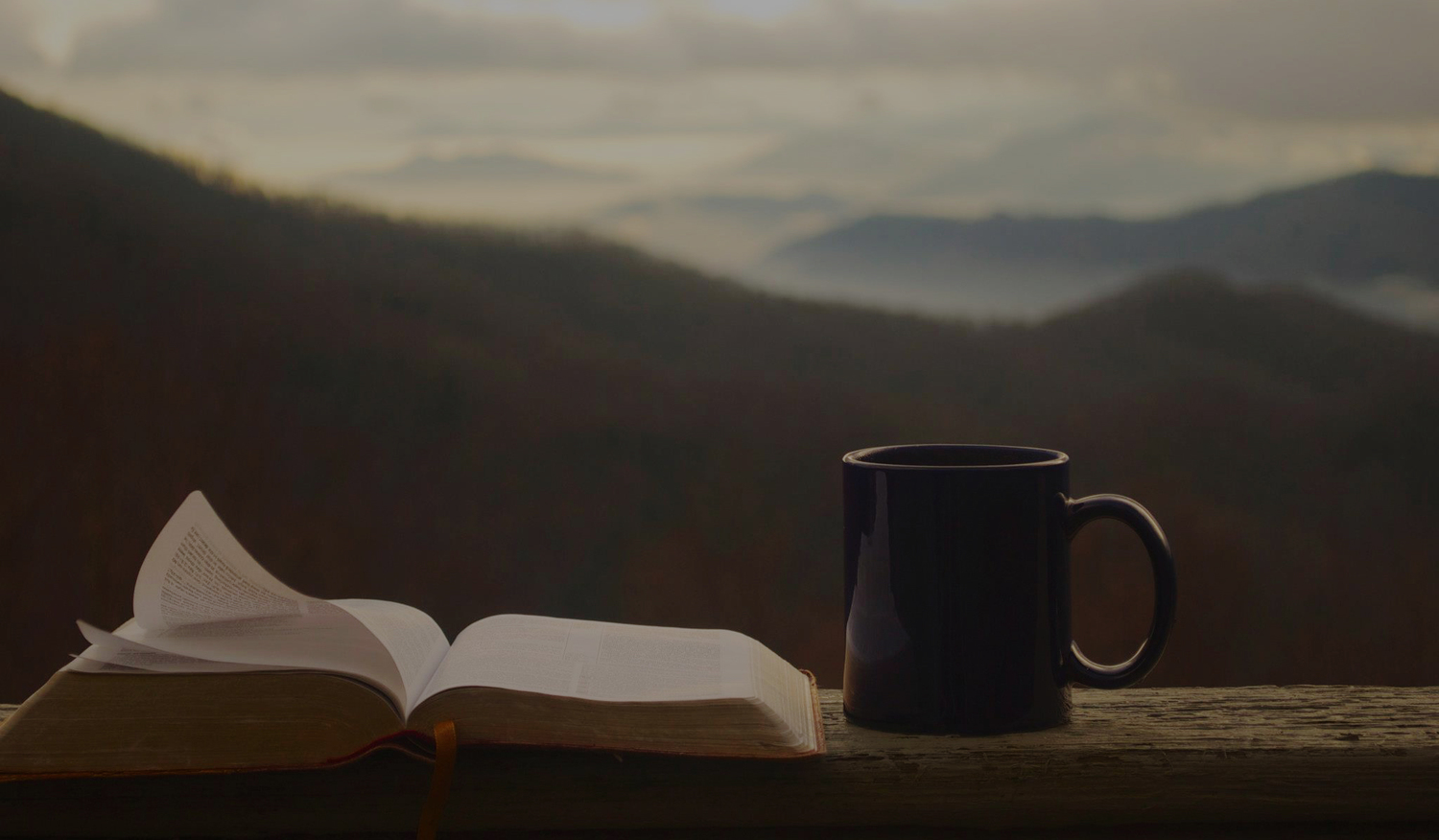 Bibles And Coffee Bible
