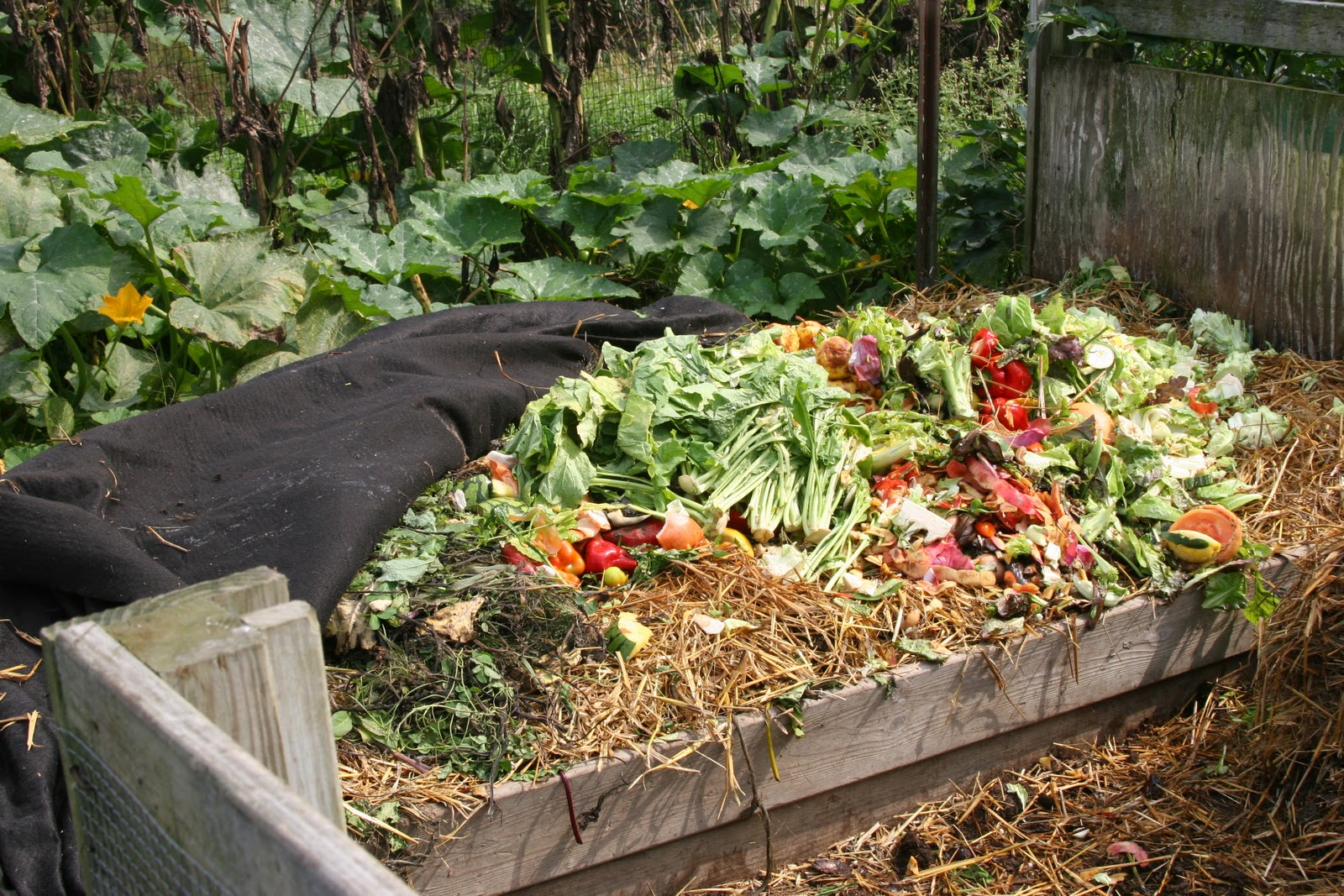 Composting is a simple way to enrich your garden soil and reduce trash.