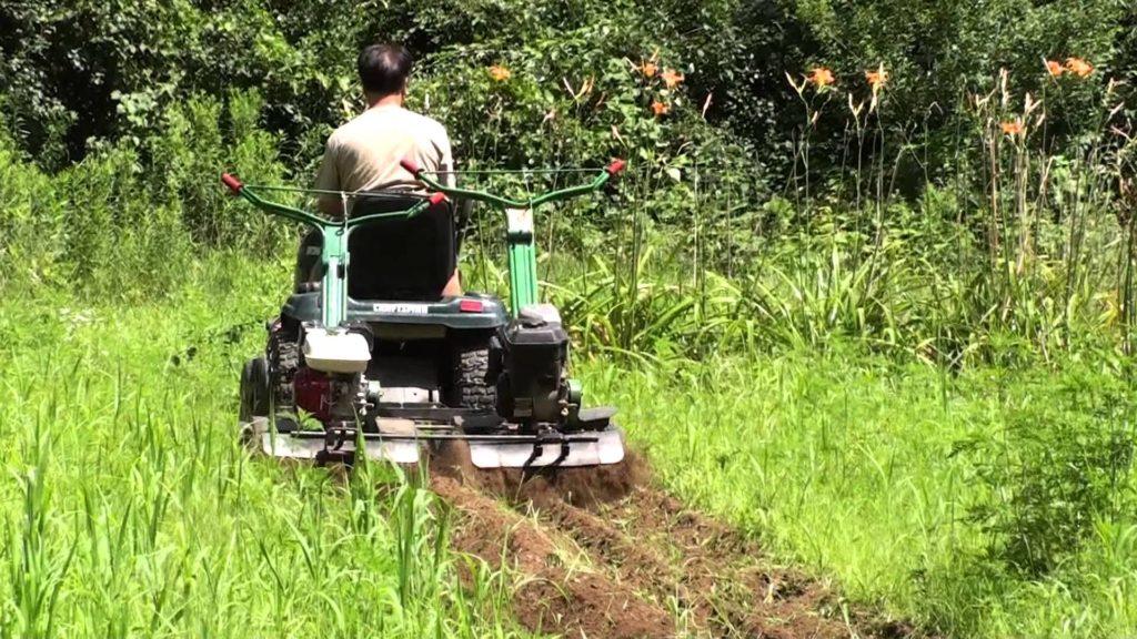 Prepper Must-Haves - Garden Tools - The Prepper Journal