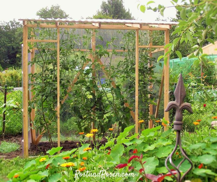 selecting crops for survival gardens the prepper journal. Black Bedroom Furniture Sets. Home Design Ideas