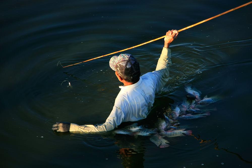 Научить рыбалке