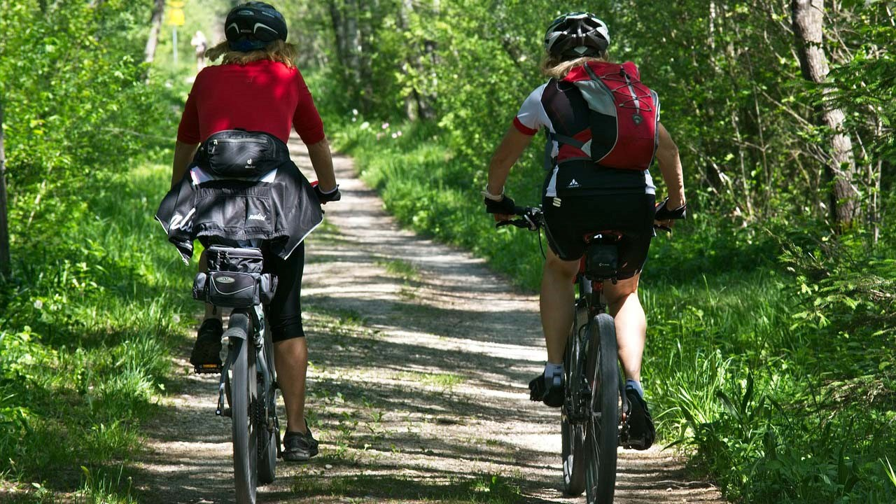 Is A Hybrid Bike Good For Both Trails And An Escape The Prepper Of Shock Absorbers 101 Tire Types Bicycle Geometry Fitting Editors Note Another Guest Contribution From Kevin Fleeman At Lifeunderskycom To Journal As Always If You Have Information Preppers That