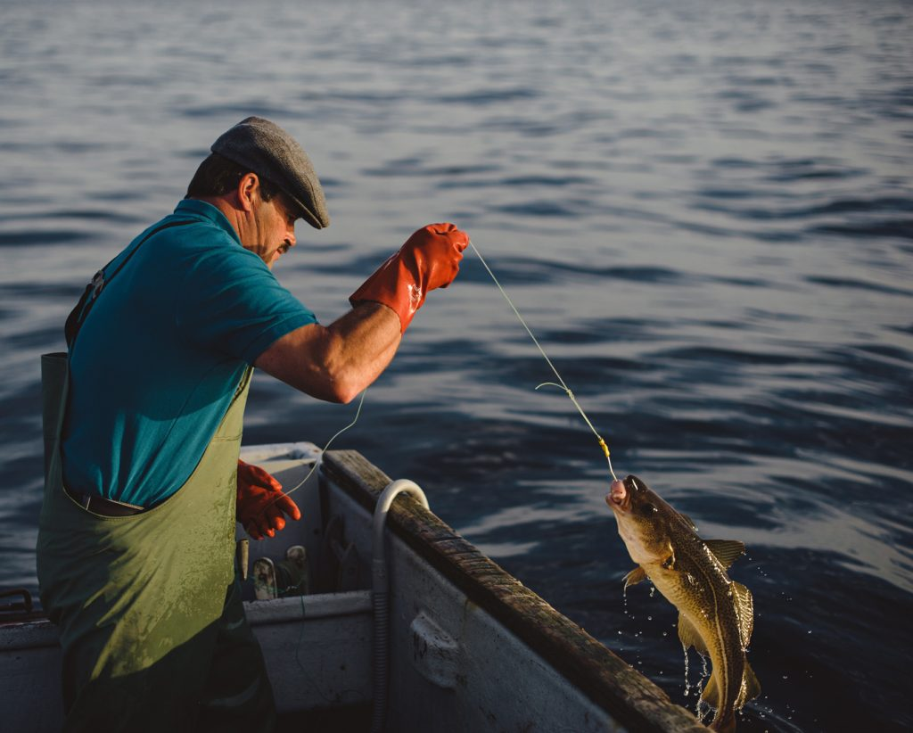 7 techniques for catching fish in a survival situation for Hand line fishing