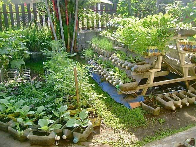 Prepper Gardens - Vertical Expansion - The Prepper Journal